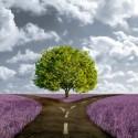 percorso di vita