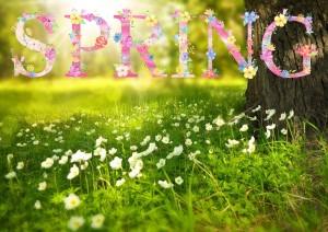 Equinozio di Primavera: la magia della rinascita